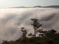 Взгорья в тумане