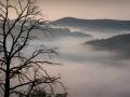 Над туманом. Одинокое