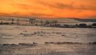 Вечерние краски зимы